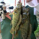 Leisure : Learning Life Through fishing~ 낚시로 살펴보는 내 삶- 수요 수필 13<조준희 기자>
