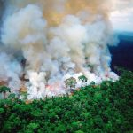 Amazon Wildfire Brings Worry to Ecosystems and Future of Mankind