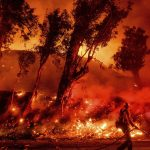 As California struggles with wildfire, baby gender party blamed for another devastating wildfire